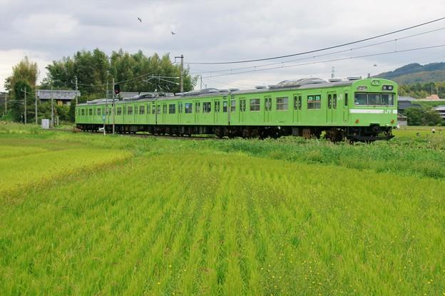 奈良線 103系
