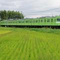 Photos: 奈良線 103系