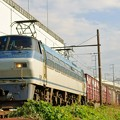 Photos: EF66 133