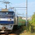 Photos: 56レ【EF210-154牽引】