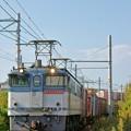Photos: 72レ【EF65 2090牽引】