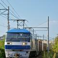 Photos: 1070レ【EF210-12牽引】