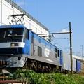 Photos: 1055レ【EF210-5牽引】