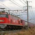 3095レ【EF510-6牽引】