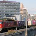 Photos: 83レ【EF510-13牽引】