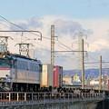 5087レ【EF65 2117牽引】