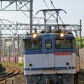 5087レ【EF65 2080牽引】