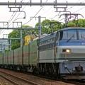 Photos: 55レ【EF66 117牽引】