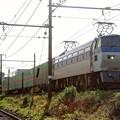 Photos: 55レ【EF66 107牽引】
