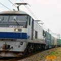 Photos: 1052レ【EF210-124牽引】