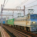 Photos: 61レ【EF66 111牽引】