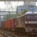 Photos: 臨8053レ【EF210-1牽引】