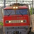 Photos: 4076レ【EF510-5牽引】