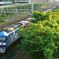 Photos: 1085レ【EF210-7牽引】