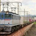 Photos: 5087レ【EF65 2060牽引】