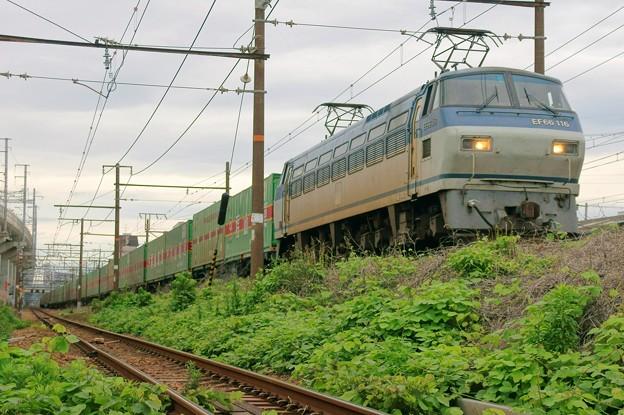 55レ【EF66 116牽引】
