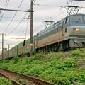Photos: 55レ【EF66 116牽引】