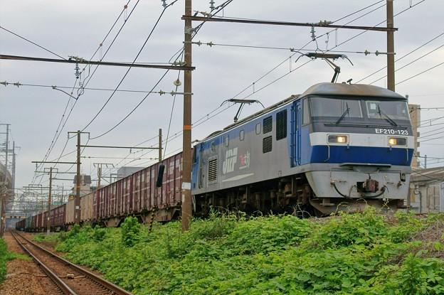 1053レ【EF210-123牽引】
