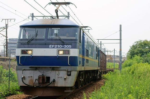 1086レ【EF210-305牽引】