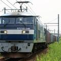 Photos: 5070レ【EF210-146牽引】