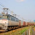 Photos: 74レ【EF65 2063牽引】