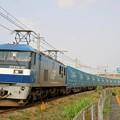 Photos: 臨8056レ【EF210-10牽引】