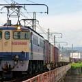 Photos: 5087レ【EF65 2139牽引】