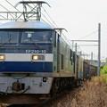 Photos: 1054レ【EF210-10牽引】