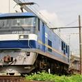 Photos: 2081レ【EF210-311牽引】