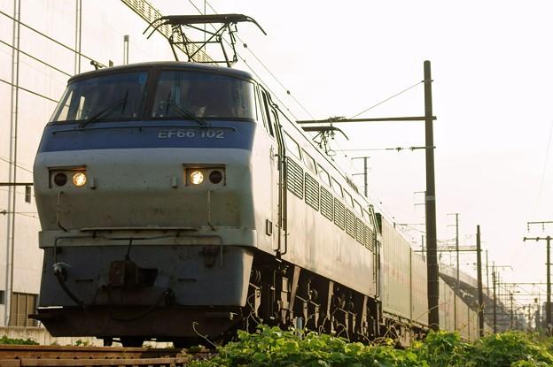 55レ【EF66 102牽引】