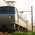 Photos: 55レ【EF66 102牽引】