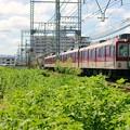 Photos: 準急 大阪上本町行き