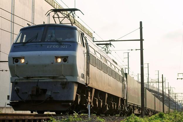 55レ【EF66 101牽引】
