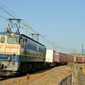 Photos: 74レ【EF65 2096牽引】
