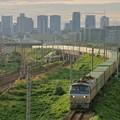 Photos: 55レ【EF66 106牽引】