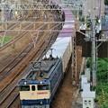 Photos: 74レ【EF65 2066牽引】
