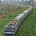 Photos: 1051レ【EF210-171牽引】