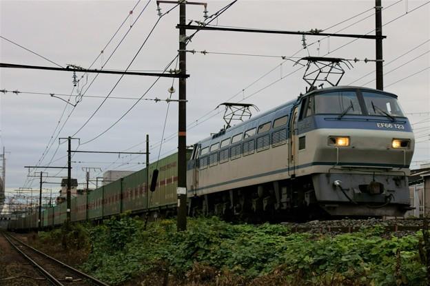 55レ【EF66 123牽引】