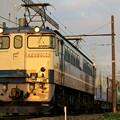 Photos: 75レ【EF65 2066牽引】