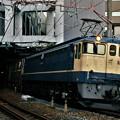 Photos: 74レ【EF65 2097牽引】