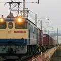 Photos: 5087レ【EF65 2097牽引】