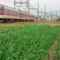 Photos: 近鉄田原本線