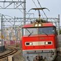 Photos: 83レ【EF510-11牽引】