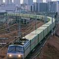 Photos: 55レ【EF66 109牽引】