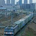Photos: 1051レ【EF210-123牽引】
