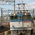 Photos: 5087レ【EF65 2085牽引】