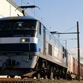 Photos: 73レ【EF210-165牽引】