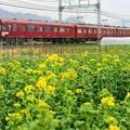 2680系 鮮魚列車