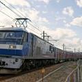 Photos: 5064レ【EF210-5牽引】