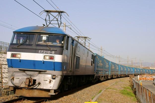 Photos: 臨8056レ【EF210-8牽引】